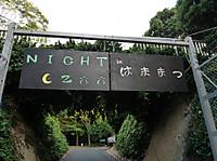 2016__nightzoo